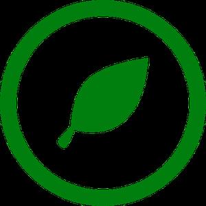 grün versichern - Versicherungen für Berufseinsteigerinnen und Berufseinsteiger